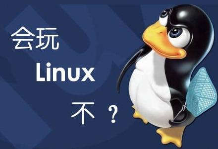 Linux全自动一键DD安装Windows系统