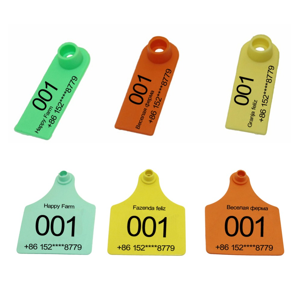Plastic Universal Livestock No words Ear Tag Tool for Pig Identification Ear Tag Pack Of 100 orange