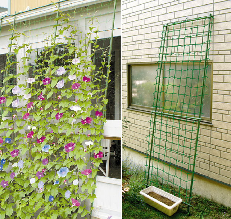 Millipore Ivy Climbing Frame Home Gardening Net Fruit Plants Fence Plastic Nylon 1 8 8m 2 7m 3 6m Mesh 10cm Grid In Fencing Trellis Gates From
