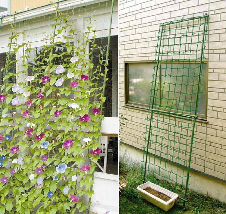 Millipore Ivy Climbing Frame Home Gardening Net Fruit Plants Fence Plastic Nylon Net 1.8*1.8M/2.7M/3.6M Mesh Net 10CM Grid
