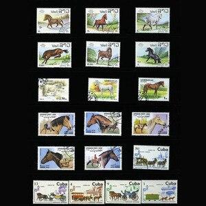 Image 2 - Horse , 250 шт./лот из всего мира неиспользованные почтовые штампы с почтовой маркой для коллекционирования печатных плат