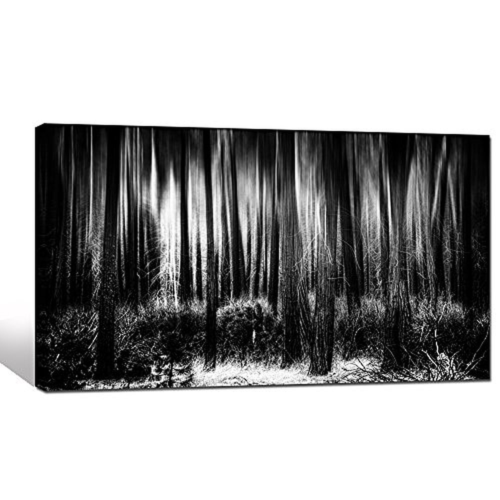 Buy black and white forest canvas wall Black and white canvas art