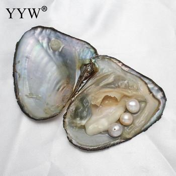 Free Shipping Vacuum-pack Freshwater Oyster Pearls 9-10mm Pearl Mussel Shell with Pearl Inside, For DIY Jewelry Earring Beads shoulder bag