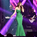 2016 Inspirado por Najwa Karam Celebridad Vestidos Arabia Saudita Dubai Oriente medio Sin Mangas Verde Vestido de Noche Vestidos Formales