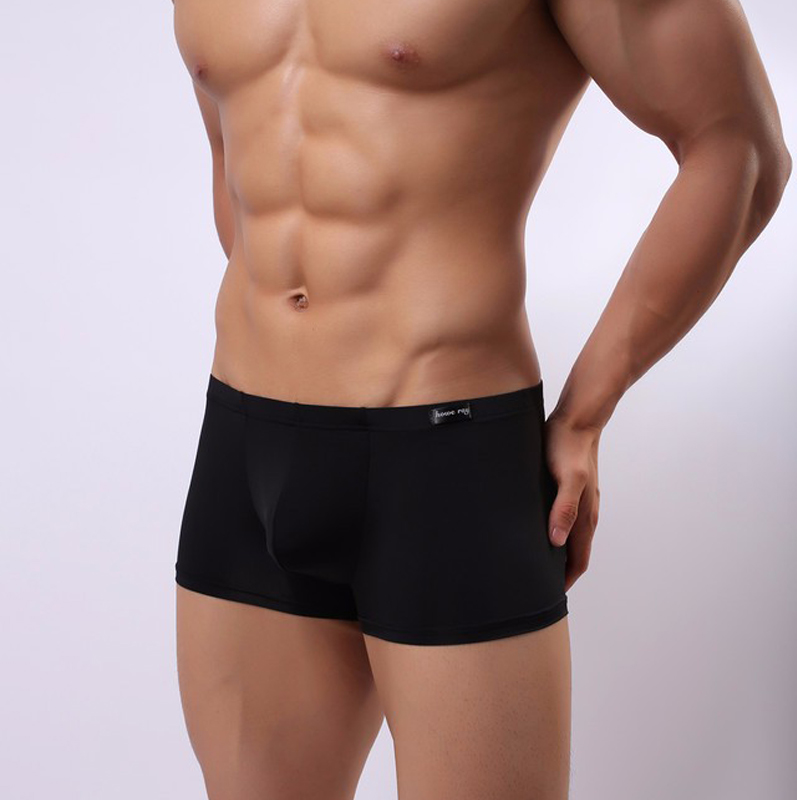 66c8f768167 Boxer Men Brand Transparent Mens Sexy Underwear Ice Silk Panties Penis  Pouch Boxershorts Gay Underpants Boxer Shorts Cuecas