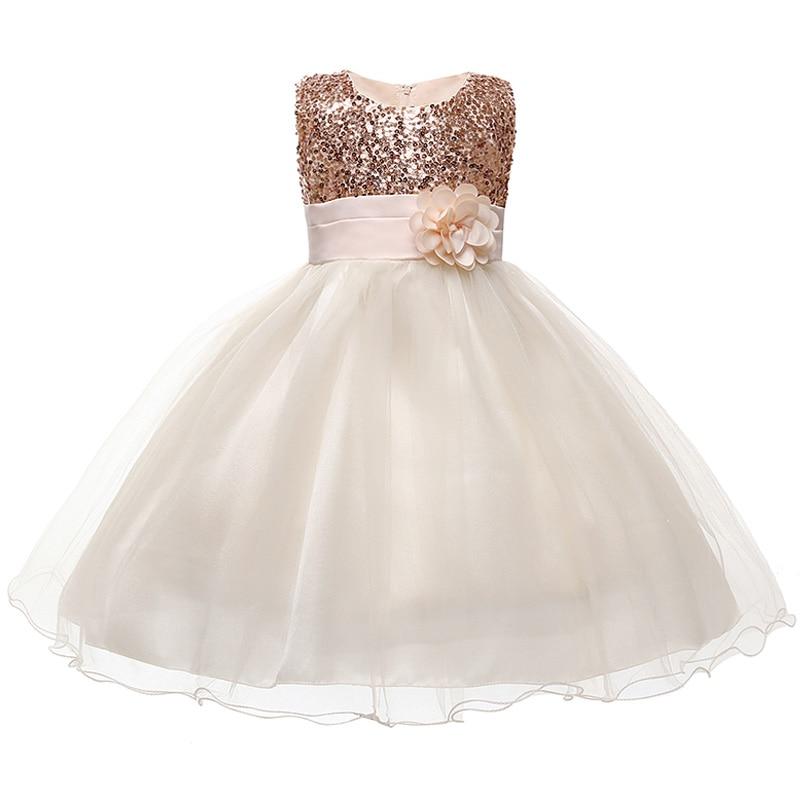 HTB1OrEsaIrrK1RjSspaq6AREXXaO Princess Flower Girl Dress Summer Tutu Wedding Birthday Party Dresses For Girls Children's Costume New Year kids clothes