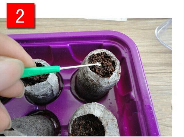 1pcs nursery block nutrition block compressed compressed peat block magic soil medium with packaging nursery block easy to use