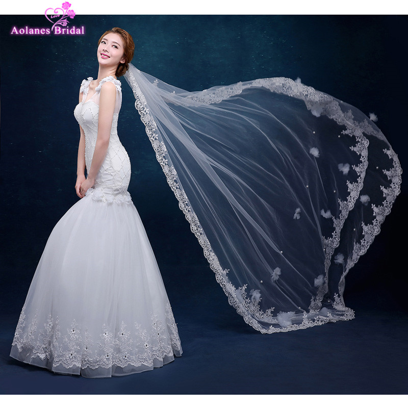 AOLANES  Ivory 3 Meters Long Cathedral Bridal Veils Tulle Appliques 3D Flowers Lace Wedding Veil With Comb Wedding Accessories