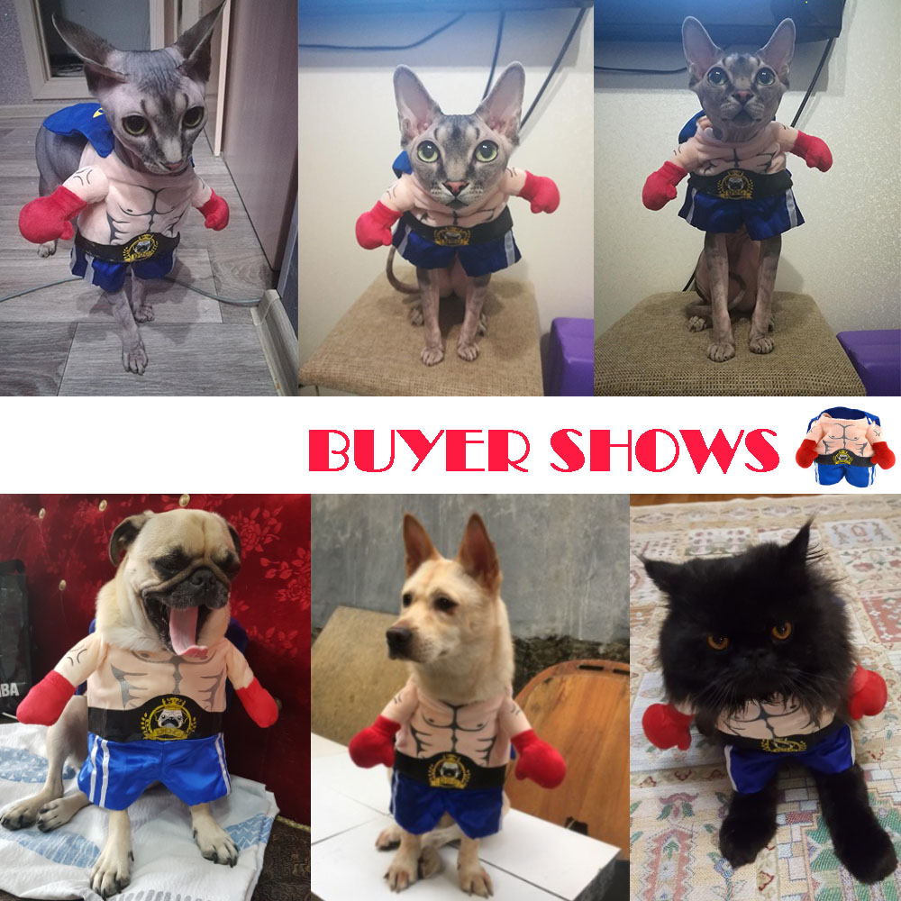 Funny Dog Cat Costumes Boxer Cosplay Suit Pet Clothing Halloween Christmas Uniform Clothes For Puppy Dogs Costume For A Cat #5