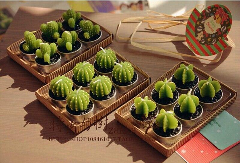 mini jardim de cactus:Miniatura de cactos vender por atacado – Miniatura de cactos comprar