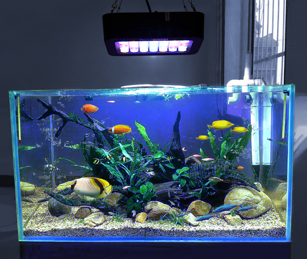Aquarium led lighting Dimmable lamp Fish bowl light Marine Fish tank Coral lights High brightness Penetrating strong FCC CE ROHS (2)