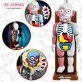 Смешно Моделирования Человеческих Органов 3D Головоломки Собраны Страшные Человеческого Тела Модель Хэллоуин Tricky Шутка Игрушка Новизны и Кляп Игрушки