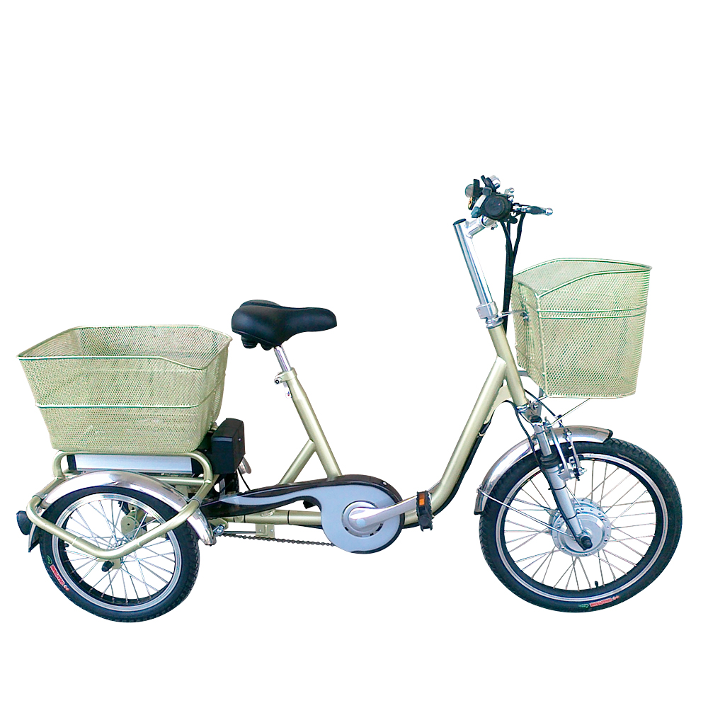 Electric Bike For One Seat Patent 36V 10AH Battery tricycle electric three wheel bike 3 wheel electric bicycle for sales CE