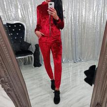 Velvet Tracksuit Two Piece Set Top + Pants Women Runway Autumn Long Sleeve Top + Pants Suits Fitness Winter Outfits WS3684V