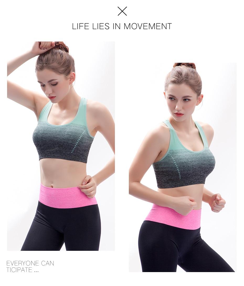 c8105d5b7 THUNSHION High Stretch Breathable Sports Bra Top Fitness Women Padded Sport  Bra for Running Yoga Gym Seamless Crop Bra Gradient
