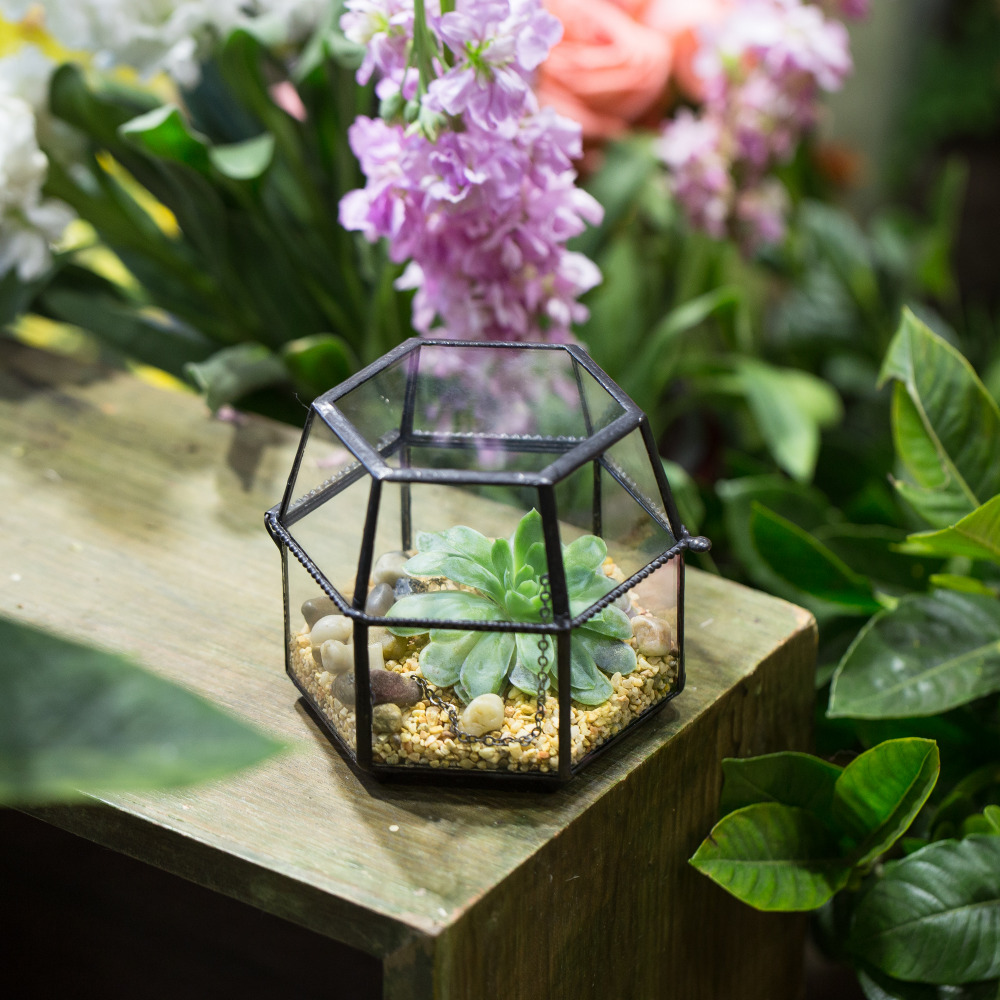 Tablet Kaca Miniature Geometric Terrarium Box Clear Glass Tile Small Succulent Planter Flower Pot Garden Decorative Gift