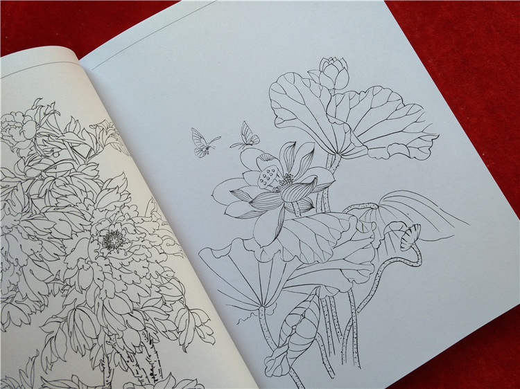 Image 2 - new Chinese painting line drawing book Color pencil Flower Birds and insect coloring book Engraving pattern for beginner-in Books from Office & School Supplies