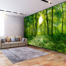 3D Stereoscopic Space Green Forest Trees Nature