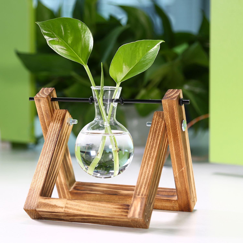 YHYS support en bois Transparent verre plantes conteneurs debout hydroponique plante Pot de fleur décor de bureau à la maison (support avec 1 Pot)