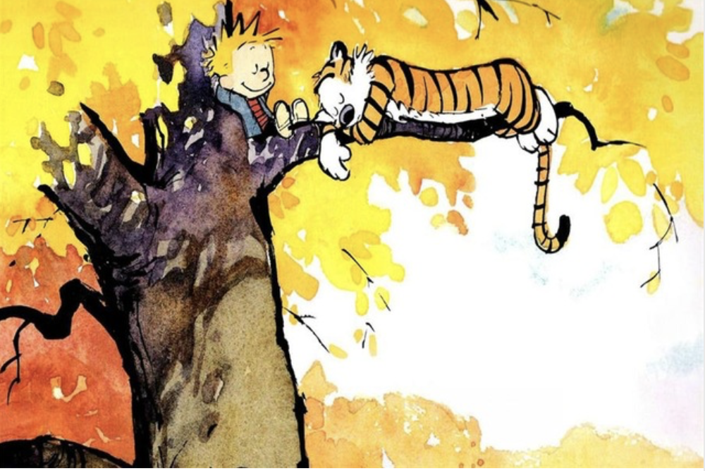 Custom Canvas Art Calvin And Hobbes Poster Calvin And Hobbes