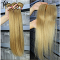 Brazilian Straight Virgin Hair Bundles With Closure 3 Bundles Brazilian Honey Blonde Hair With 1pc 4x4 Straight Lace Closure