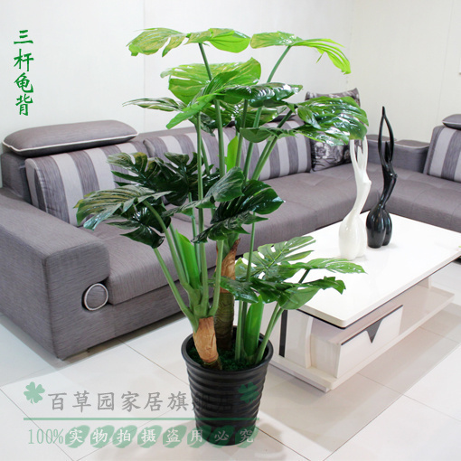 Special Artificial Plants Flowers Decorative Tree Feng Shui Fake Simulation Turtle Lucky Money