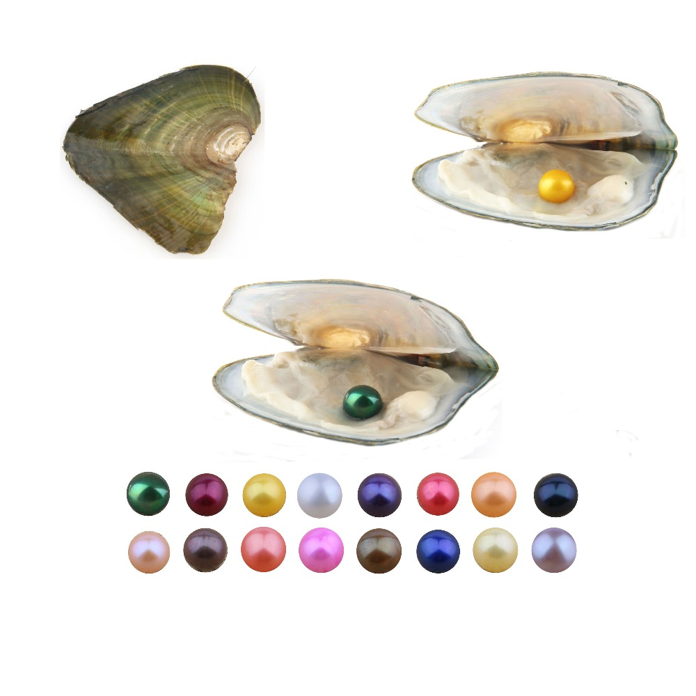 10 PCS lot Pearl Oyster Freshwater Cultured Love Wish Pearl Oyster with 8 8 5mm Round
