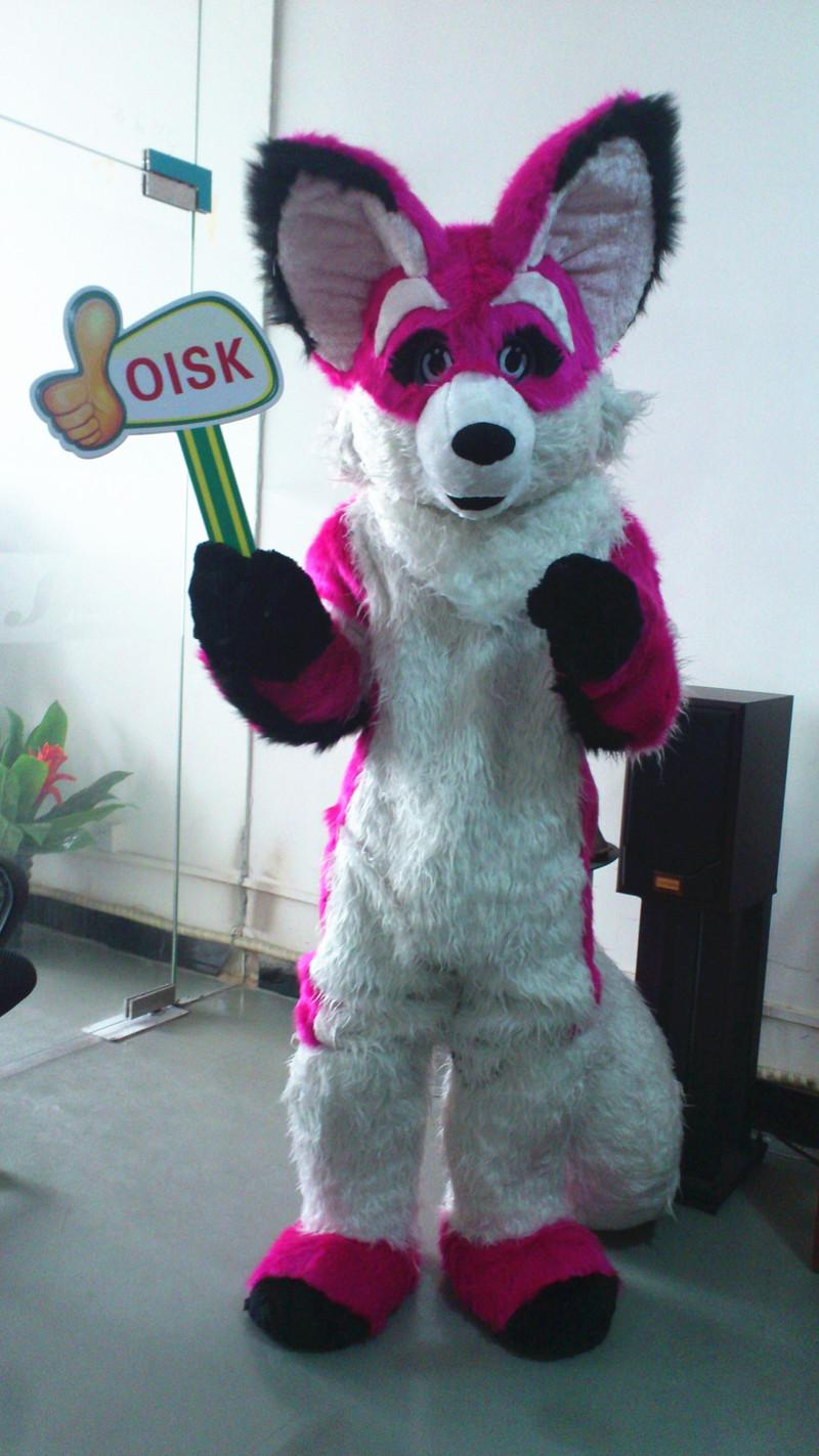 ohlees actual picture Chihuahua Luxury Fox Dog mascot costumes christmas halloween adult character corporate school