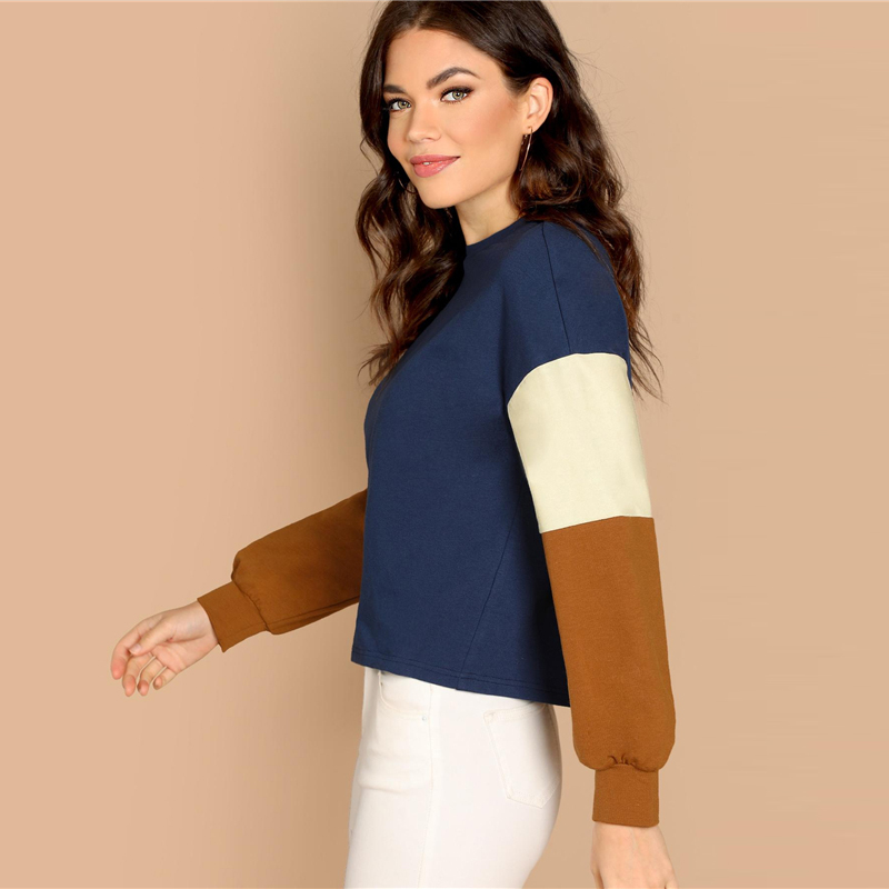 Multicolor Colorblock Sleeve Round Neck Long Sleeve Stretchy Casual Minimalist Sweatshirts