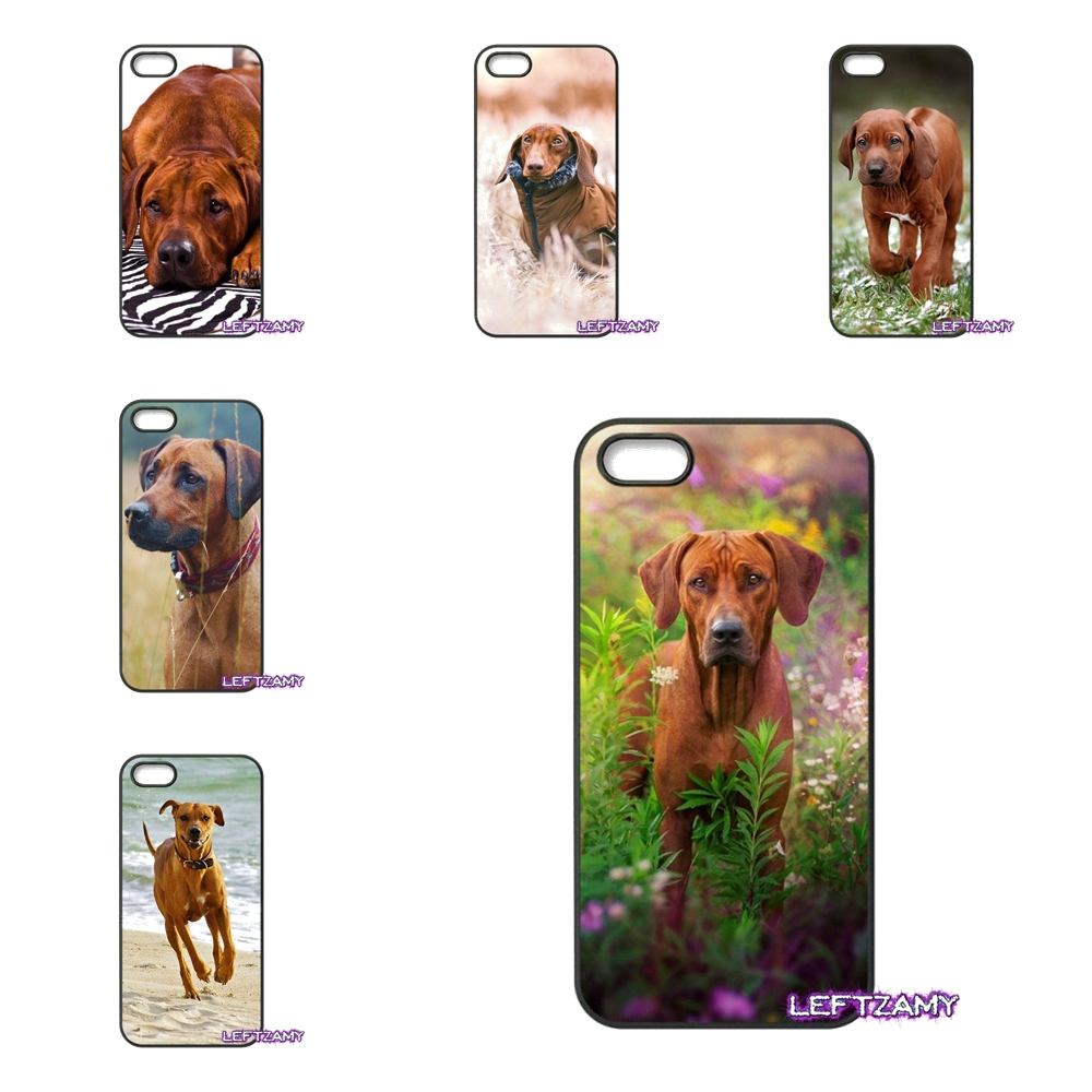 Rhodesian Ridgeback Dog Hard Phone Case Cover For iPhone 4 4S 5 5C SE 6 6S 7 8 Plus X 4.7 5.5 iPod Touch 4 5 6