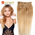 Sliver Gray Brown Clip On Hair Extension 60cm 24inch Hairpiece Straight Clip In Hair Extensions Hair Piece Human Hair Clips