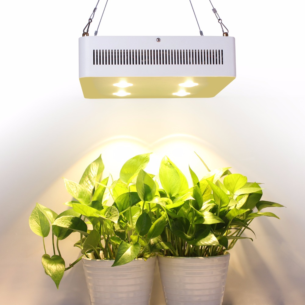 Original Cree chip 800W COB led grow light Full Spectrum for Hydro Medical Indoor Plant Veg Flowers Grow Tent Lighting garda decor тумба прикроватная зеркальная