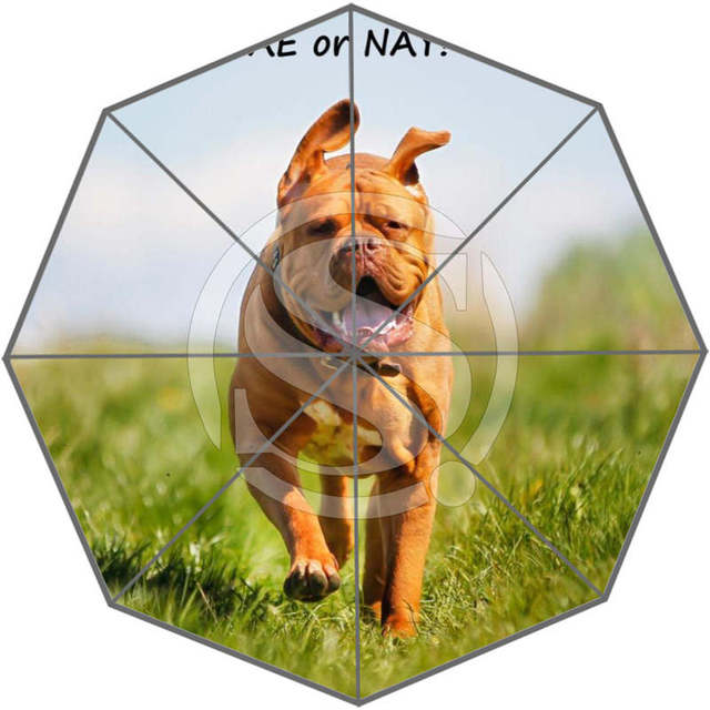 859d079ee2e8 US $23.99 |New Custom Cute dog Best Nice Cool Design Portable Fashion  Stylish Useful Foldable Umbrella SQ0617=D0321-in Umbrellas from Home &  Garden on ...
