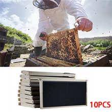 Пчелиный воск гнездо улей 10 рамка набор 10 основа 10 глубокие рамки для Langstroth пчеловодства сосны пчеловодства оборудование@ 30