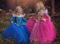 Venta al por menor Vestido de Princesa Vestido de Los Niños Vestidos de Verano Vestido 2016 Del Partido Del Traje de Princesa Elsa Princesa Aurora de Color Rosa y azul