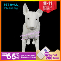 Oueneifs IP12 Bull Dog Pet Doll Sd Bjd Model Tsum Reborn Baby Girls Boys Toys Shop
