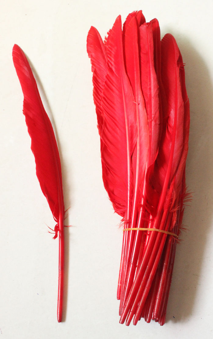 Free shipping 100pcs Red dyed Loose Goose feathers 25-35cm long party home decoration hair accessories
