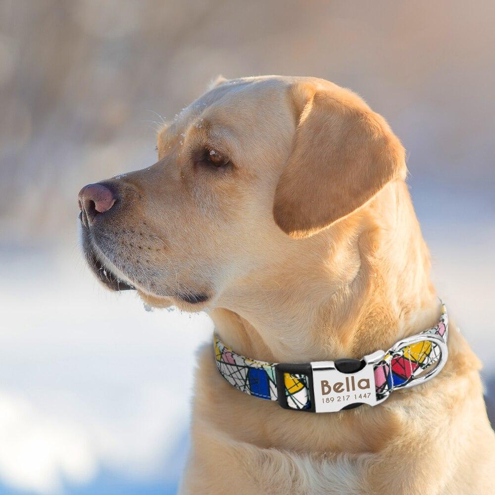 HTB1OxF3bjzuK1Rjy0Fpq6yEpFXaO - Halsband hond met naam en telefoonnummer nylon vrolijke motieven