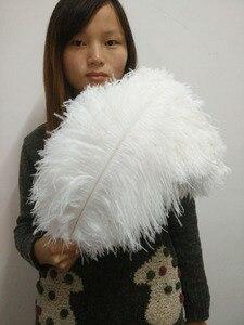 Image 2 - 50 pc qualidade penas de avestruz branco, 16 18 polegadas/40 45 cm, DIY decorações de casamento