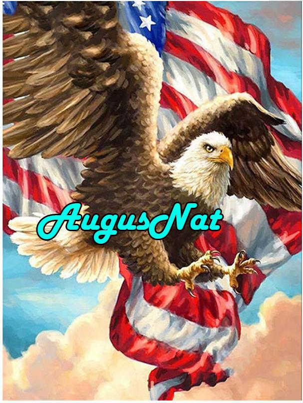 Картина с орлом бриллиантом американский флаг димон вышивка полный квадратный Диамант горный хрусталь картина масляная краска по номеру летающая птица