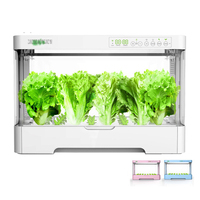 Electronic Intelligent Soilless Hydroponic Box Vegetable Cultivation Equipment Seed Grow Kit Home Balcony Planting System