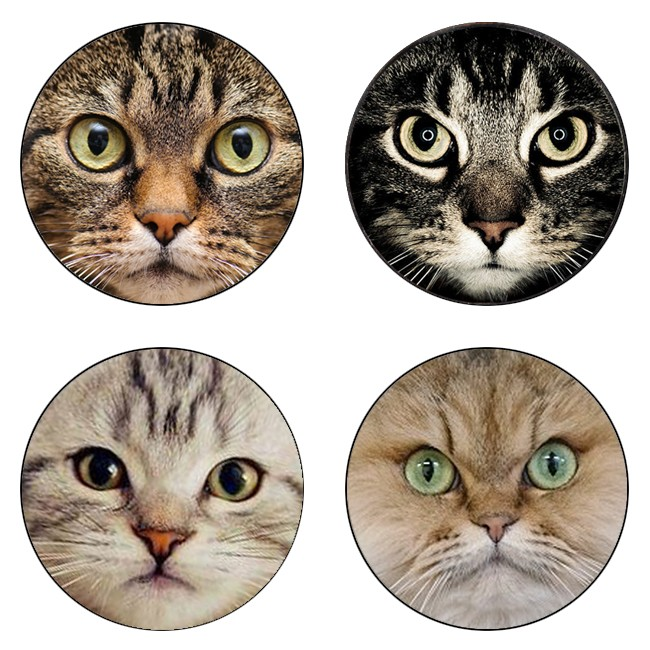 5pcs16mm20mm25mm Black Cat  For Pet Lovers Cat  With Two Ears Handmade Photo Glass Drop Style Cabochons Jewelry Accessories