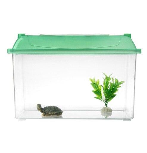 Small turtles for aquarium 1000 aquarium ideas for Mini fish tank