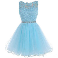 Sky Blue 2019 Homecoming Dresses A line Organza Lace Beaded Backless Short Mini Elegant Cocktail Dresses