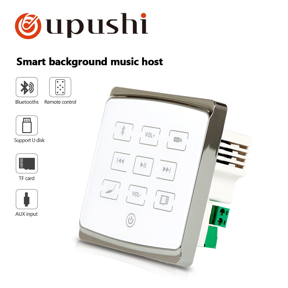 Oupushi A1 Family Smart Wall Music PA System Home Theater Background Music Panel With USB SD