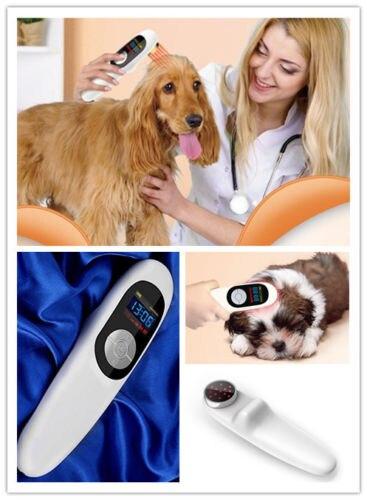 Dyreklinik Dyresygehus Brug veterinæranvendelse Kold laserterapienhed til katte-9370