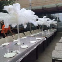 Wholesale!Free shipping 100 pcs 35 40 inch 14 16cm beautiful white ostrich feathers