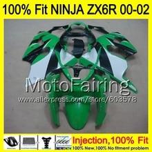 8Gifts Injection mold Body For KAWASAKI NINJA ZX-6R 00-02 1HM61ZX 6R ZX6R 00 01 02 ZX636 636 2000 2001 2002 Fairing Green black