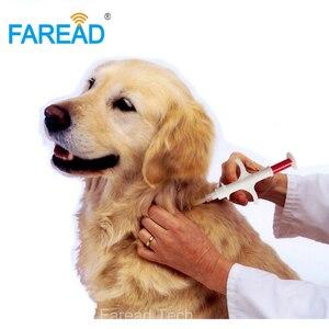 Image 3 - ISO FDX B 1.4x8 millimetri di gatto cane microchip animale siringa ID impianto pet circuito integrato ago veterinario RFID iniettore PIT tag per acquacoltura pesce