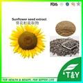 100% pure natureza lecitina extrato em pó de semente de girassol 500 g/lote